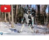 Atlas-Roboter der Google-Tochter Boston Dynamics