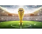-Fußball-WM