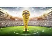 WM Pokal